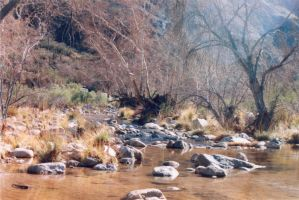 028 Stream - Sabino Canyon AZ by J2theStock