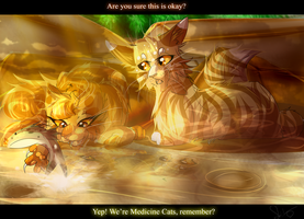 Leafpool and Mothwing (Warrior Cats) by WarriorCat3042