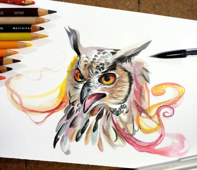 318- Eagle Owl by Lucky978