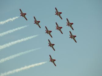 The Magnificent Snowbirds by applefish