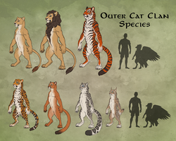 Outer Cat Clan Overview by KatieHofgard