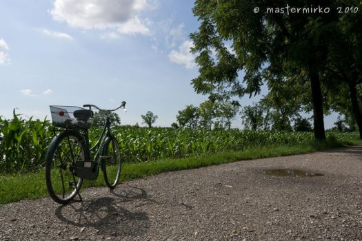 Bike and maize by mastermirko