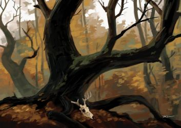 Forest Study by tohdraws