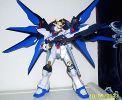 Strike Freedom Gundam 1-100 HG by The-Vash