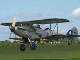 Hawker Hind Take Off by davepphotographer