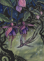 Fuchsia ACEO commission by thedancingemu