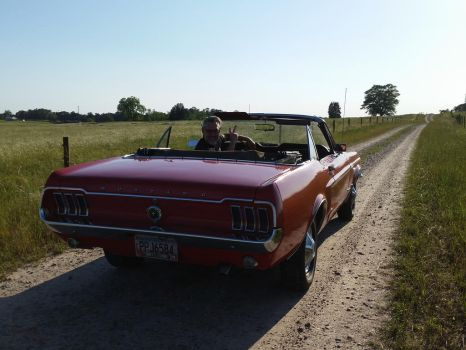 mustang on a country road 2 by andersonbi