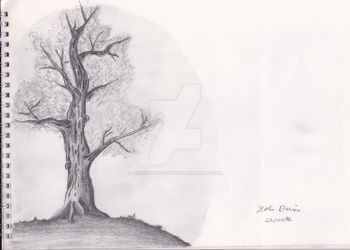 Medieval Theme Tree Sketch by Pseudonymousartist