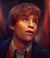Newt Scamander / Eddie Redmayne by cinetrix