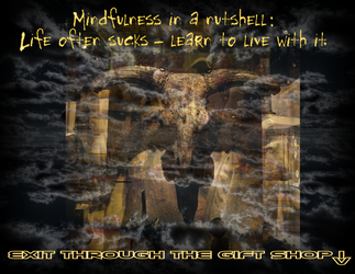 Mindfulness in a nutshell (perfectly true) by aglezerman