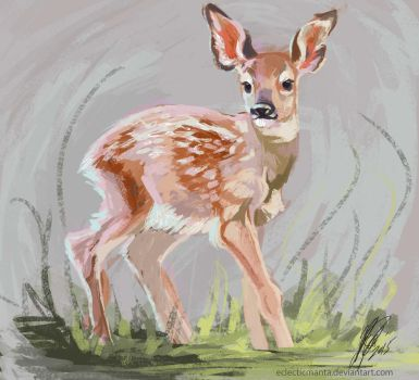 Oh Deer Study by EclecticManta