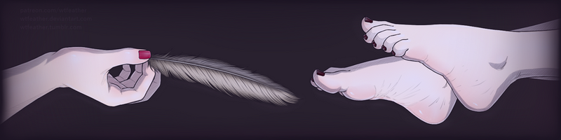New Patreon Banner! by wtfeather