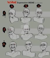 Insane Expression meme by BloodCatQueen