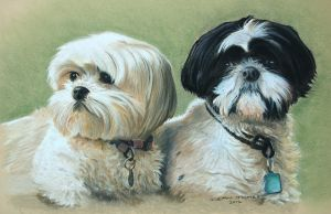Sue's babies by DIXIEDEAN