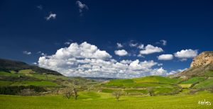 Herd of clouds by rdalpes