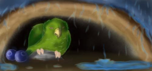 Pitpit / celestial parrotlet by MandyDreamer