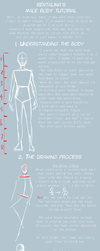 Male Body Tutorial by bertalina