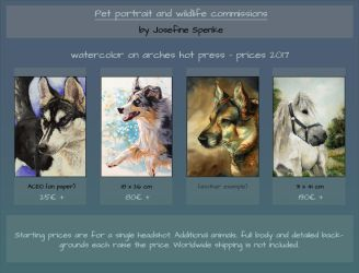 Watercolor commission prices for 2017 by elektroyu