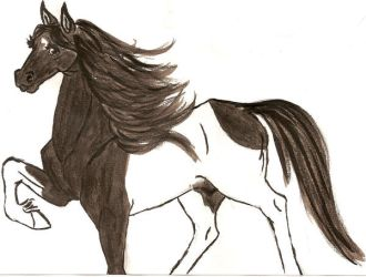 My beautiful horse by RollaXx
