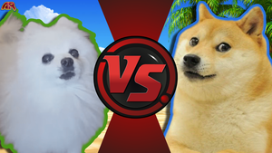 CFC Ideas|Gabe vs. Doge by Vex2001