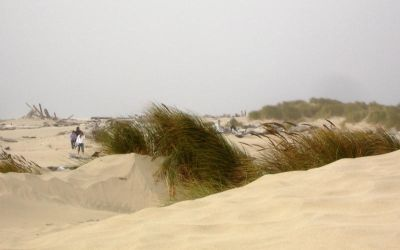 Sand Dunes 2 by LionHearted1956