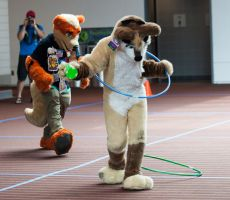 Fursuit Games - Relay Husky by lupiniastudios