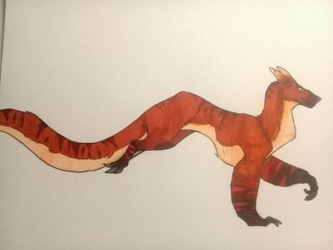 (Amber) -Traditional Redesign- by AmberSpyder