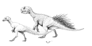 Ornithischians Enquilled by Qilong