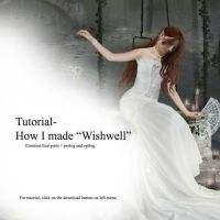 Tutorial: Wishwell by Iardacil