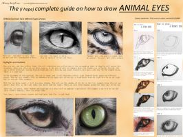 The (I hope) complete guide on ANIMAL EYES by BeckyKidus