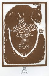 Squirrel in a box by Layen