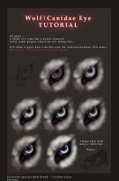 Wolf-Canidae Eye TUTORIAL by WhiteSpiritWolf