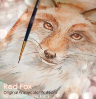 Red Fox - Original watercolour postcard by Anhyra