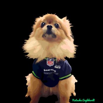 Bella the Cutest Seahawks Fan by nenglehardt