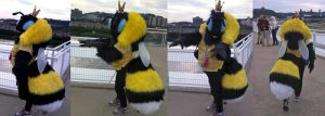 Honey bee costume by Crystumes