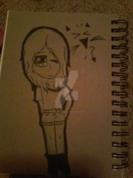 the back of my new sketch book by ShualtShipper