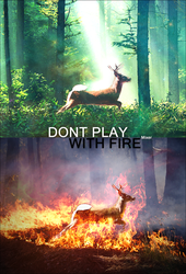 Dont Play With Fire by Mixerido