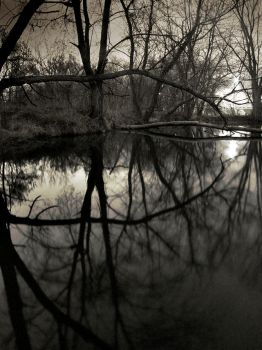 reflective silhouette 2 by homesickellian