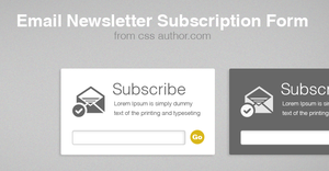 Beautiful Free Email Newsletter Subscription Form  by cssauthor