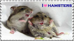I love hamsters stamp by Nei-Ning