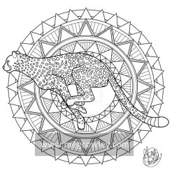 Cheetah (The Exotic Colouring Book) by megcowley