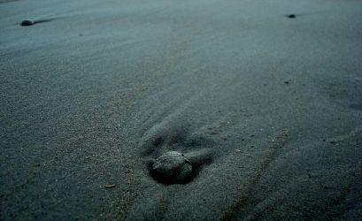 Pebble in the Sand by akib99