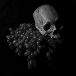 Skull and Grapes Redux by TheVenomousSwan