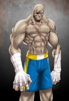 SF2 Sagat by redgvicente