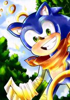 Sonic The Hedgehog + Speedpaint by Nataly2
