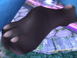 Giant Lucario Foot by THEJAO1000
