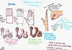 Hands 'n Paws Tutorial by EffieQuisquilla
