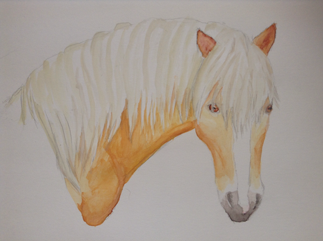 Haflinger Watercolor by shadee