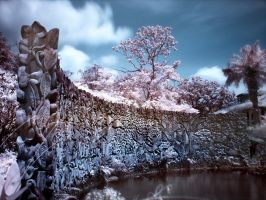 iNfraRed - bOtanical gardens 3 by shin-ex