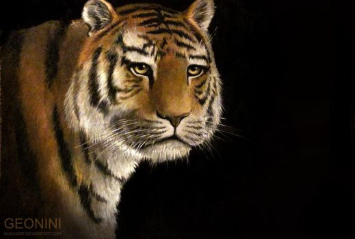 Wise Tiger by nino4art